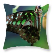 Black Green Tailed Jay 2 Throw Pillow