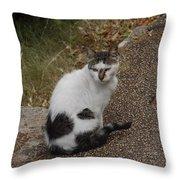 Black Heart Cat Throw Pillow