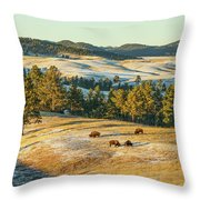 Black Hills Bison Before Sunset Throw Pillow