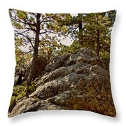 Black Hills Boulders Throw Pillow