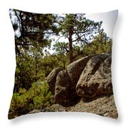 Black Hills II Throw Pillow