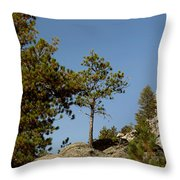 Black Hills Lone Tree Throw Pillow