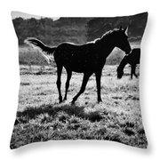 Black Horse. Throw Pillow