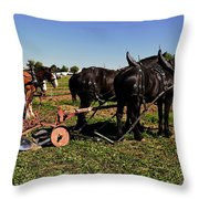 Black Horses With Sulky Plow Two  Throw Pillow