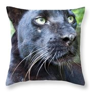 Black Is Beautiful Throw Pillow