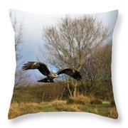 Black Kite Throw Pillow