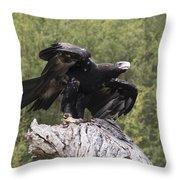 Black Kite Throw Pillow