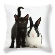 Black Kitten And Dutch Rabbit Throw Pillow