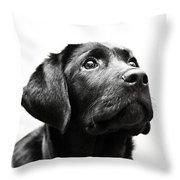 Black Labrador Retriever Potrait Throw Pillow