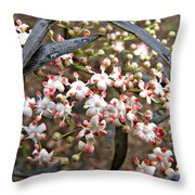 Black Lace Elderberry With Raindrops Throw Pillow