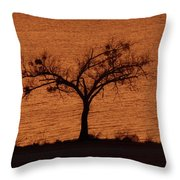 Black Lace Tree Throw Pillow