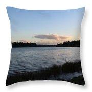 Black Lake Throw Pillow