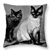 Black Manx And Siamese Cats Throw Pillow