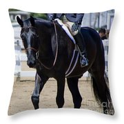 Black Morgan Horse Hunter Jumper Throw Pillow