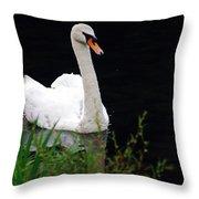 Black Mountain Swan Throw Pillow