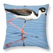 Black-necked Stilt Wading  Throw Pillow