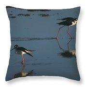 Black-necked Stilts - California Central Coast Throw Pillow