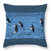 Black-necked Stilts In Flight - 2 Throw Pillow