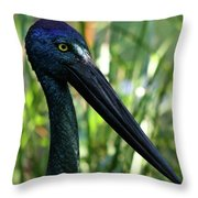Black Necked Stork 1 Throw Pillow