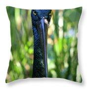 Black Necked Stork Throw Pillow