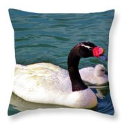 Black-necked Swan With Baby Throw Pillow