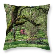 Black Oak And Creek Throw Pillow