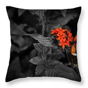 Black-orange Butterfly Throw Pillow