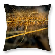 Black Pennisetum In Setting Sun Throw Pillow