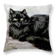 Black Persian Cat Throw Pillow