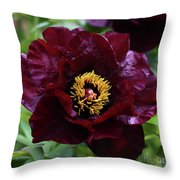 Black Pirate 2121 Throw Pillow