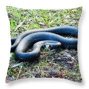 Black Racer Throw Pillow