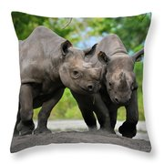 Black Rhinoceroses Throw Pillow