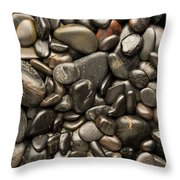 Black River Stones Portrait Throw Pillow by Steve Gadomski