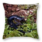 Black Salamander Throw Pillow