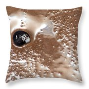 Black Shell On Beach Throw Pillow