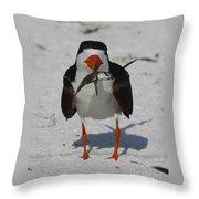 Black Skimmer With Dinner Throw Pillow