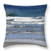 Black Skimmers In Ponce Throw Pillow
