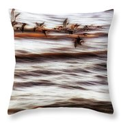 Black Skimmers Of Long Beach - Mississippi - Birds Throw Pillow