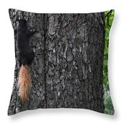 Black Squirrel With Blond Tail Two  Throw Pillow