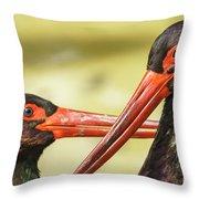 Black Storks Jerez De La Frontera Spain Throw Pillow