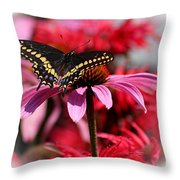 Black Swallowtail Butterfly With Coneflower And Monarda Throw Pillow