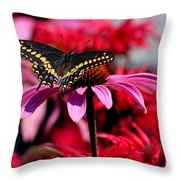 Black Swallowtail Butterfly With Coneflowers And Bee Balm Throw Pillow