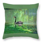 Black Swan Swim In A Pond Throw Pillow