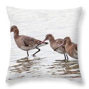Black-tailed Godwits Throw Pillow