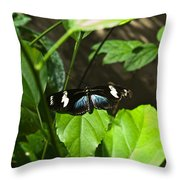 Black Tropical Butterfly Throw Pillow