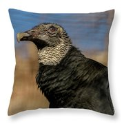Black Vulture 1 Throw Pillow