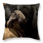Black Vulture 2 Throw Pillow