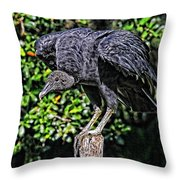 Black Vulture On A Fence Post Throw Pillow