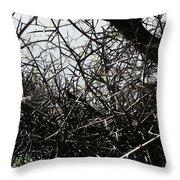 Black Walnut Spikes II Throw Pillow