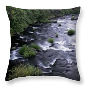 Black Waters Throw Pillow